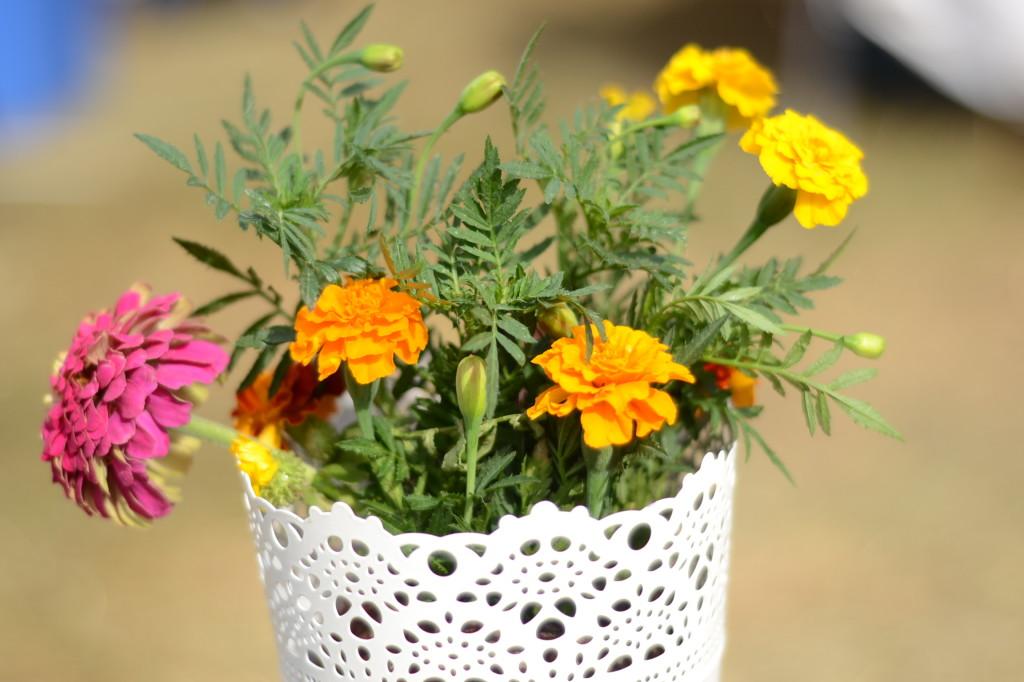 flori de gustar