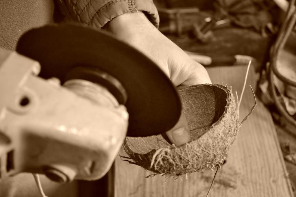 taierea cocosului